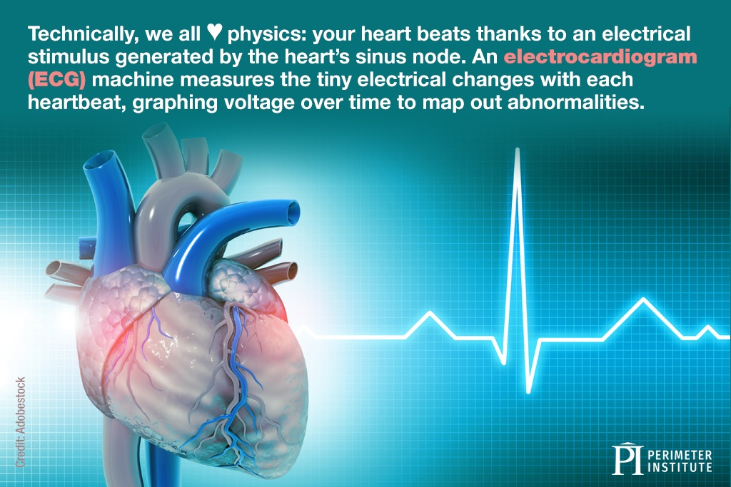 Technically, we all heart physics: your heart beats thanks to an electrical stimulus generated by the heart's sinus node. An electrocardiogram (ECG) machine measures the tiny electrical changes with each heartbeat, graphing voltage over time to map out abnormalities.